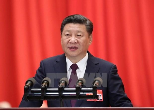 Embajador vietnamita en China destaca significado de visita de Xi Jinping a Vietnam hinh anh 1