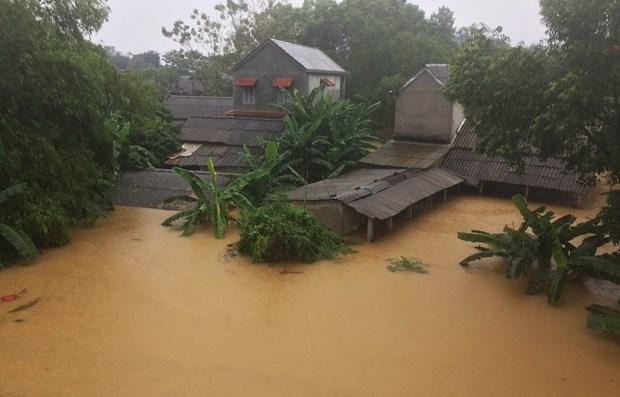 Vicepremier vietnamita orienta trabajos de recuperacion tras el paso del tifon Damrey hinh anh 1
