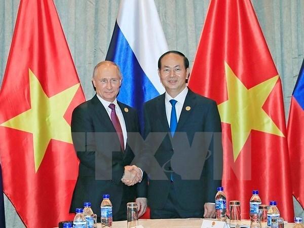 Presidente de Vietnam se reune con su homologo ruso, Vladimir Putin hinh anh 1