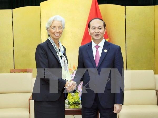 Vietnam y FMI buscan impulsar cooperacion macroeconomica hinh anh 1
