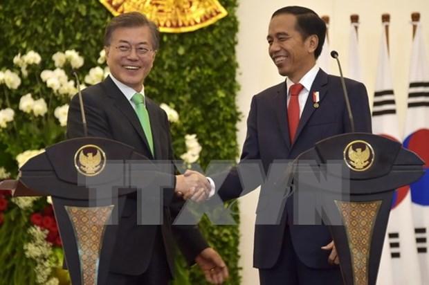 Sudcorea e Indonesia elevan sus nexos al nivel de asociacion estrategica especial hinh anh 1