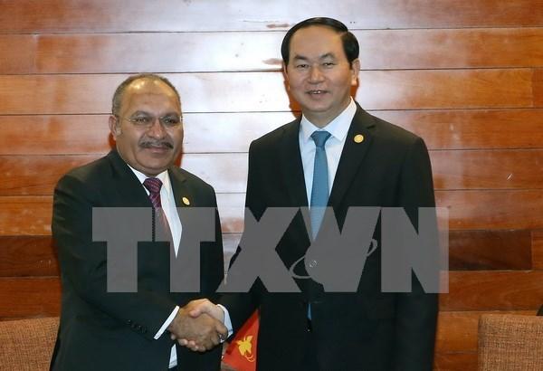 Vietnam respaldara celebracion del APEC 2018 en Papua Nueva Guinea hinh anh 1