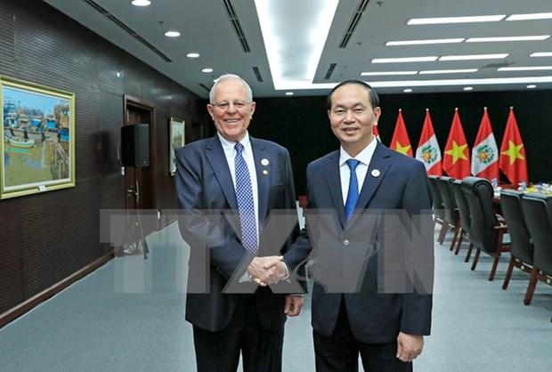Vietnam y Peru por aprovechar potencialidades existentes para fomentar cooperacion hinh anh 1