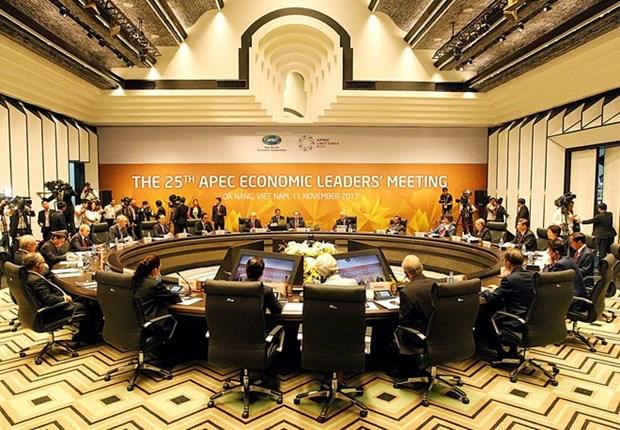 Comienza en Vietnam Reunion de Lideres Economicos del APEC hinh anh 1