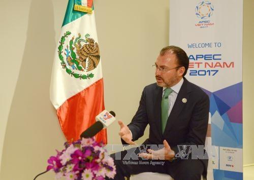 Canciller de Mexico destaca liderazgo y propuestas de Vietnam en APEC hinh anh 1
