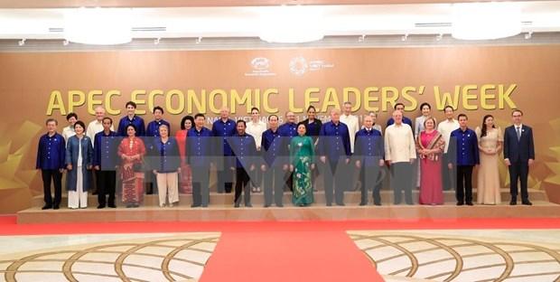 Presidente Tran Dai Quang preside cena de gala a lideres economicos del APEC hinh anh 1