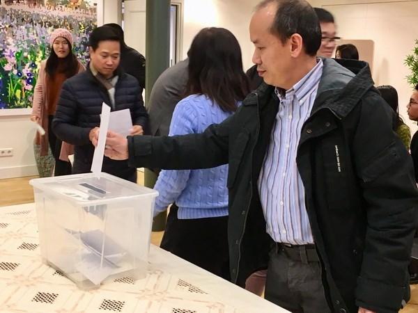 Vietnamitas en Paises Bajos ayudan a connacionales afectados por desastres naturales hinh anh 1