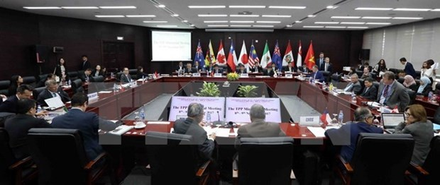 China anuncia que acuerdo de asociacion transpacifico no afectara al RCEP hinh anh 1