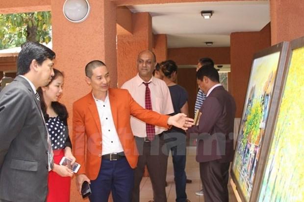 Presentan arte culinario vietnamita en Sudafrica hinh anh 1