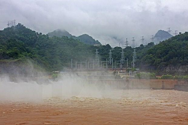 Provincia vietnamita avanza en desarrollo de energias renovables con inversiones extranjeras  hinh anh 1