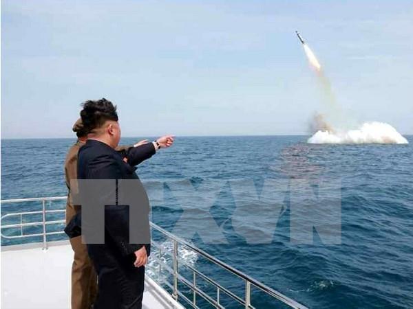 Singapur prohibe transacciones comerciales con Corea del Norte hinh anh 1