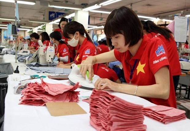 Industria de confecciones textiles de Vietnam trata de ampliar sus mercados extranjeros hinh anh 1