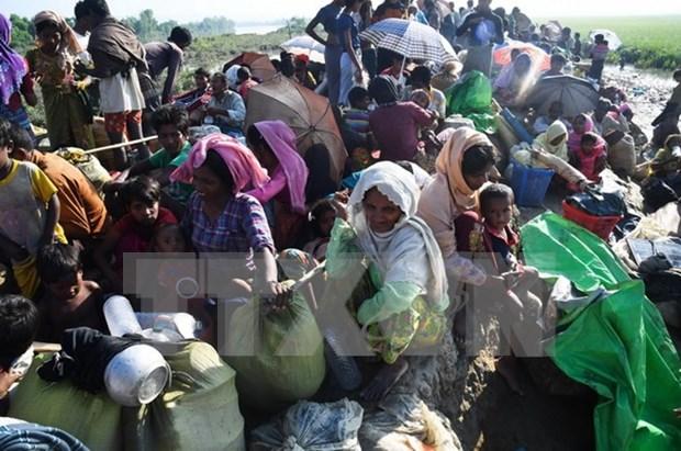 China propone solucion a la crisis rohingya en Myanmar hinh anh 1