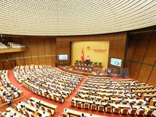 Parlamento de Vietnam aprueba reajustes de Ley de organizaciones crediticias hinh anh 1