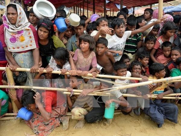 Bangladesh y Myanmar aceptaron propuesta de intermediacion en crisis de rohingya hinh anh 1