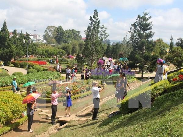 Entregan mapas turisticos gratuitos durante Festival de Flores de Da Lat hinh anh 1