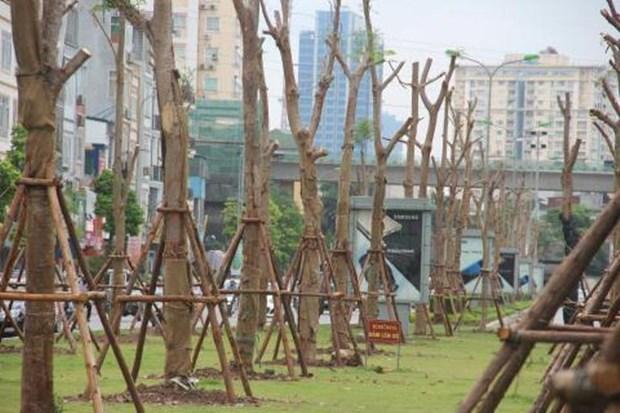 Celebraran en Vietnam diversas actividades por centenario de independencia de Finlandia hinh anh 1