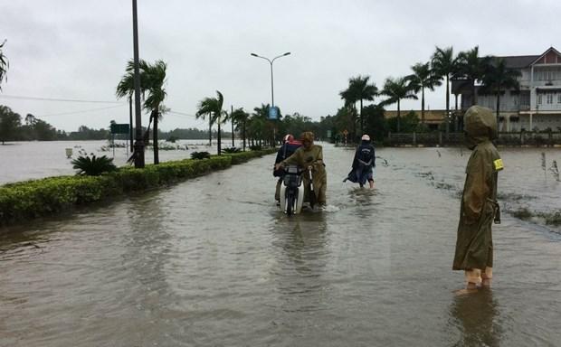 Vietnamitas en Argelia apoyan a las victimas de inundaciones en tierra natal hinh anh 1