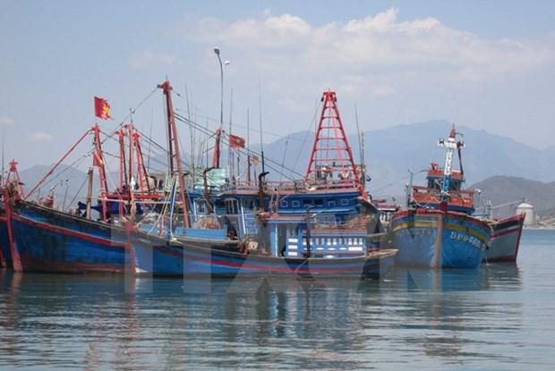 Provincia vietnamita de Tra Vinh respalda a pescadores en acceso a los seguros hinh anh 1