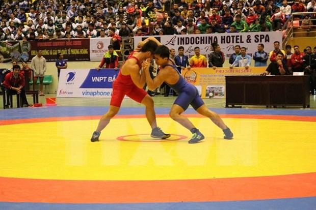 Vietnam se impone en campeonato regional de lucha libre hinh anh 1