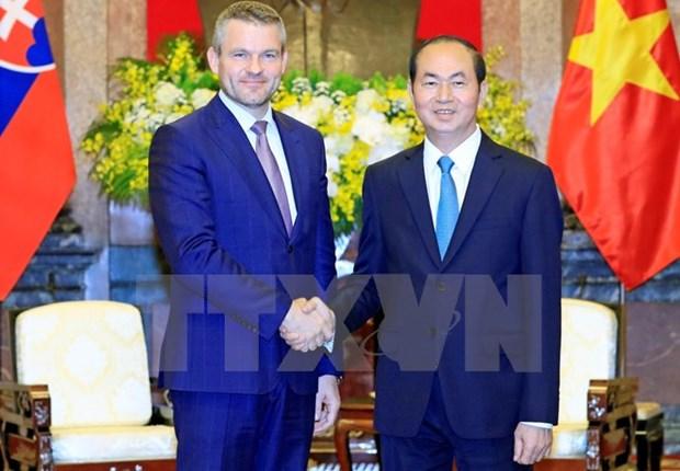 Presidente de Vietnam aboga por aumentar nexos comerciales con Eslovaquia hinh anh 1