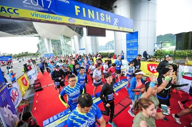 Miles de atletas participan en concurso internacional de maraton en Ciudad Ho Chi Minh hinh anh 1