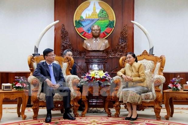 Vietnam y Laos robustecen cooperacion juridica hinh anh 1