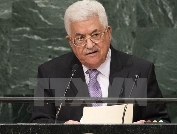 Presidente vietnamita envia mensaje de solidaridad con Palestina hinh anh 1