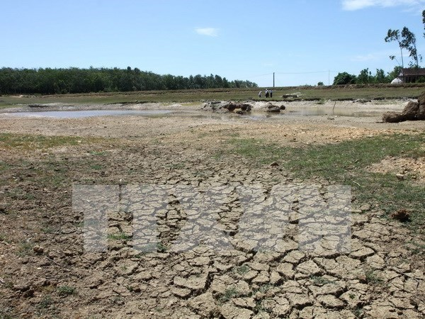 Urgen mas recursos financieros para enfrentar cambio climatico en Delta del Mekong de Vietnam hinh anh 1