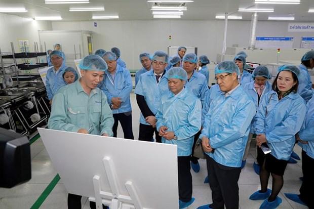 Samsung asistira a empresas vietnamitas en integracion a cadena de suministro global hinh anh 1