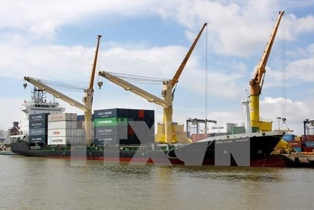 Grupos vietnamita y belga cooperan en construccion de muelles en puerto de Hai Phong hinh anh 1
