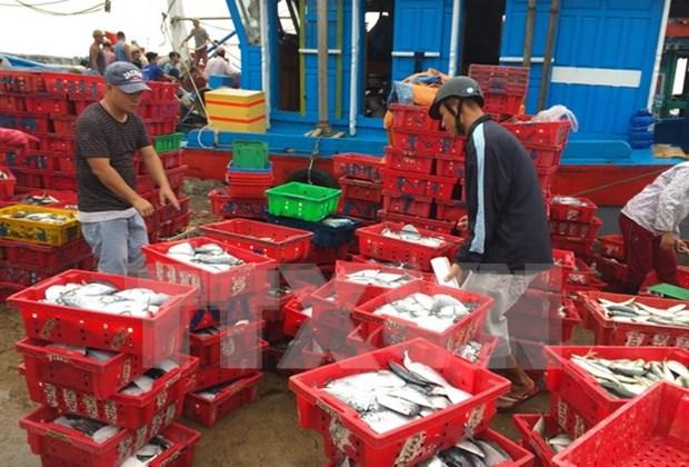 Esmerado Vietnam en resolver problemas relativos a pesca ilegal hinh anh 1