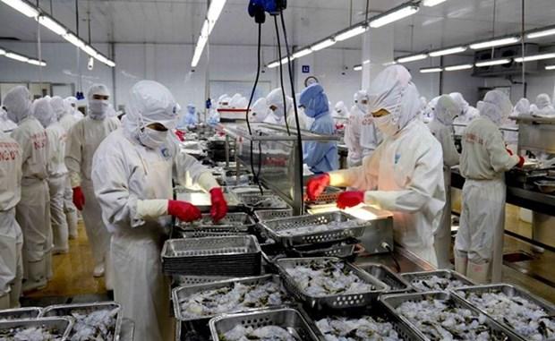 Exportaciones de mariscos vietnamitas alcanzaran ocho mil millones de dolares en 2017 hinh anh 1