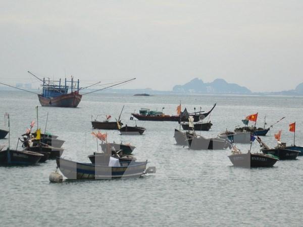 La ASEAN analiza la gestion de contaminacion marina hinh anh 1