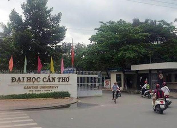 Debaten en Vietnam tendencia de desarrollo de educacion superior hinh anh 1
