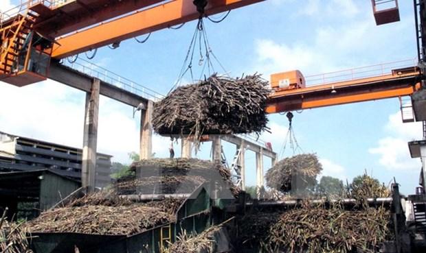 Vietnam y Taiwan (de China) refuerzan colaboracion en industria hinh anh 1