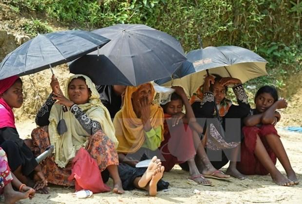 Myanmar establece comision para realizar recomendaciones sobre Rakhine hinh anh 1