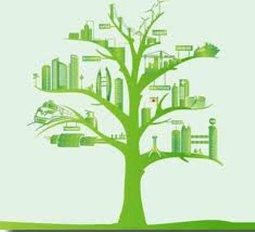 Revisan en Vietnam implementacion de estrategia nacional de crecimiento verde hinh anh 1