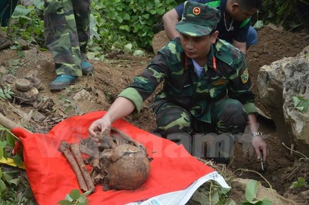 Revisan en Vietnam labores de identificacion de restos de martires hinh anh 1