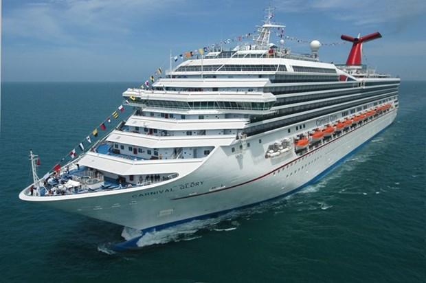 Da Nang por impulsar el turismo de cruceros hinh anh 1
