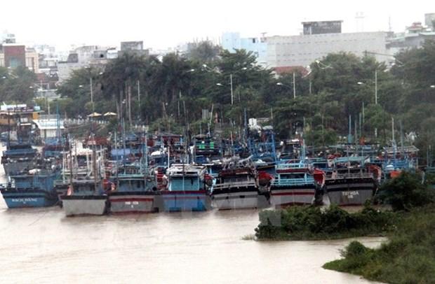 Sube a 41 el saldo mortal del tifon Kai-Tak en Filipinas hinh anh 1