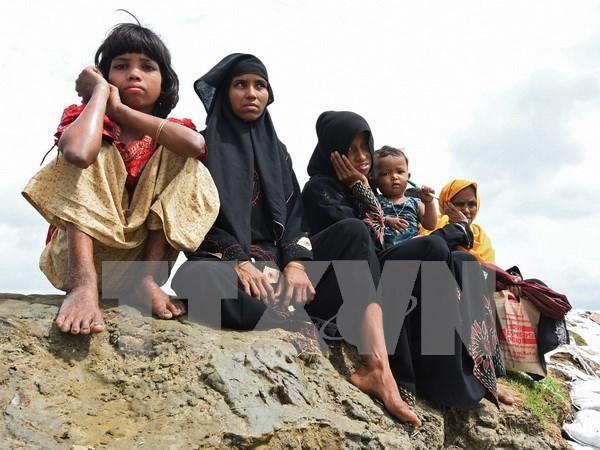 Ejercito de Myanmar investiga una fosa comun en estado de Rakhine hinh anh 1