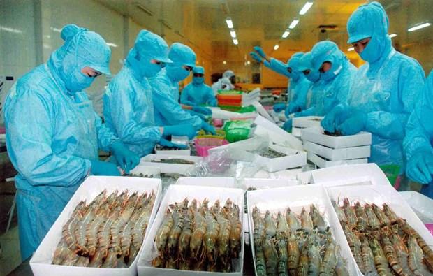 Alta demanda de productos agricolas en Africa y Medio Oriente: enormes oportunidades para Vietnam hinh anh 1