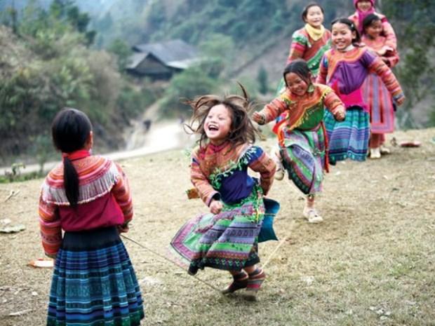 Ofrece Irlanda asistencia financiera a zonas etnicas vietnamitas hinh anh 1