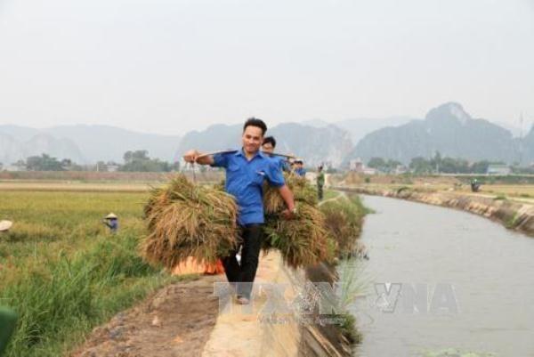 Provincia vietnamita de Quang Ninh avanza en construccion de nuevas zonas rurales hinh anh 1