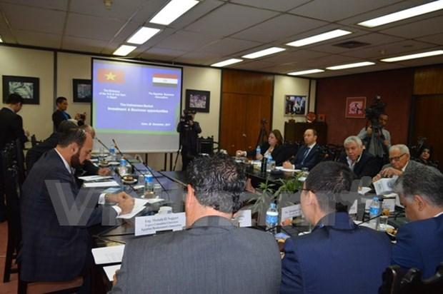 Empresas egipcias estudian politicas de inversion de Vietnam hinh anh 1
