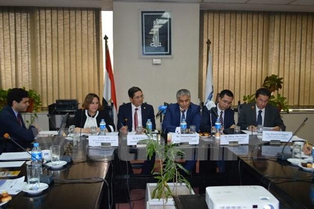Promueven en Egipto potencialidades economicas de Vietnam hinh anh 1