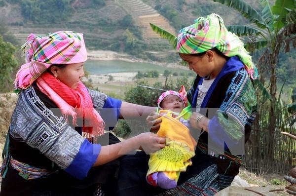 Ayuda de ONGs extranjeras contribuye a desarrollo de Vietnam hinh anh 1