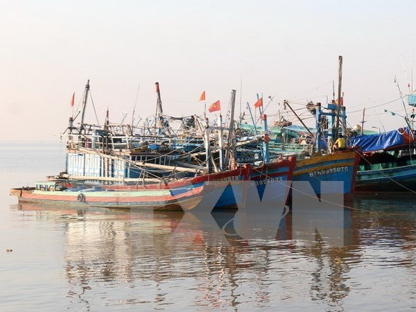 Vietnam se prepara para enfrentar tifon Tembin hinh anh 1