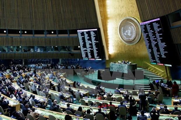 ONU urge a Myanmar a poner fin a la violencia en Rakhine hinh anh 1